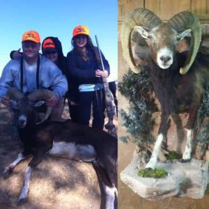 Kevin hunting ram with family